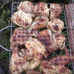 Шашлык из курицы с уксусом и луком — классический рецепт