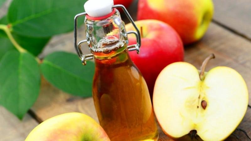 Яблочный уксус при грибке