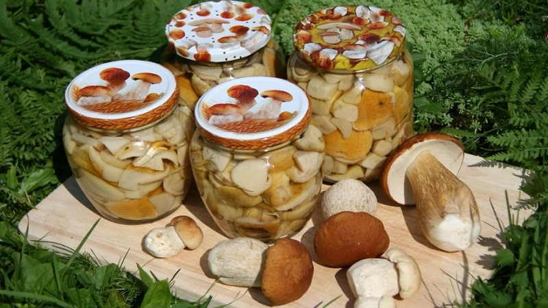 законсервированные грибы